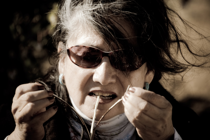 Edwina Freeman splits Rhus trilobata
