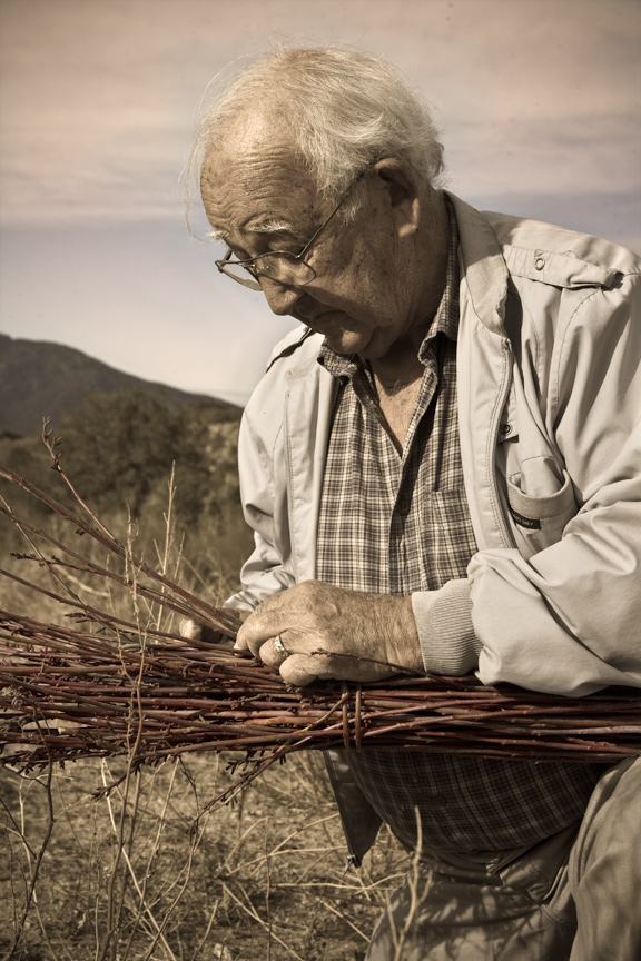 Justin Farmer gathers Rhus trilobata, or basketry sumac