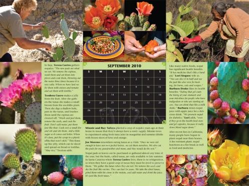 calendar_prickly