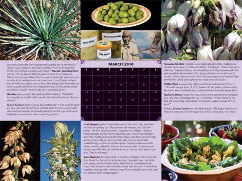 calendar_yucca