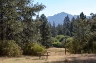 Idyllwild meadow