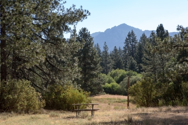 Idyllwild meadow