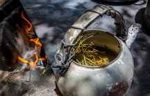 Ephedra teapot